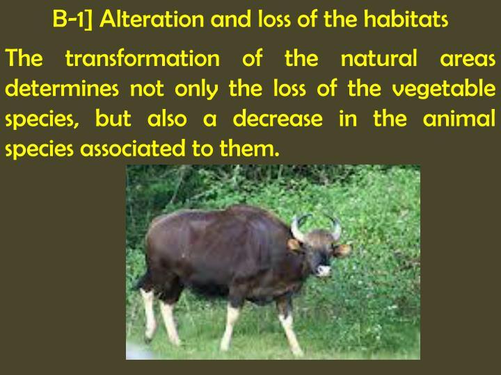 B-1] Alteration and loss of the habitats