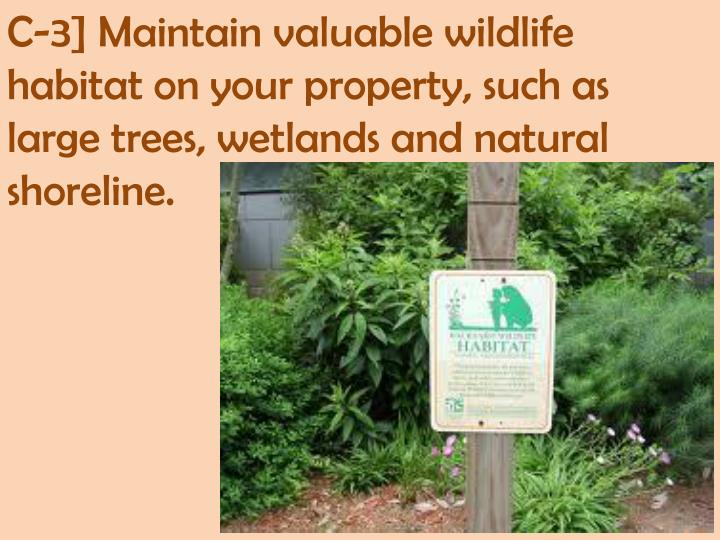 C-3] Maintain valuable wildlife habitat on your property, such as large trees, wetlands and natural shoreline.