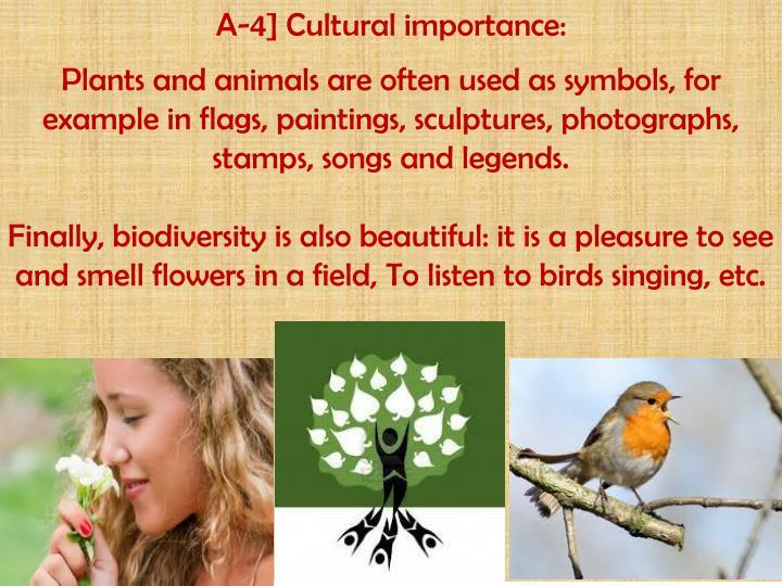 A-4] Cultural importance:
