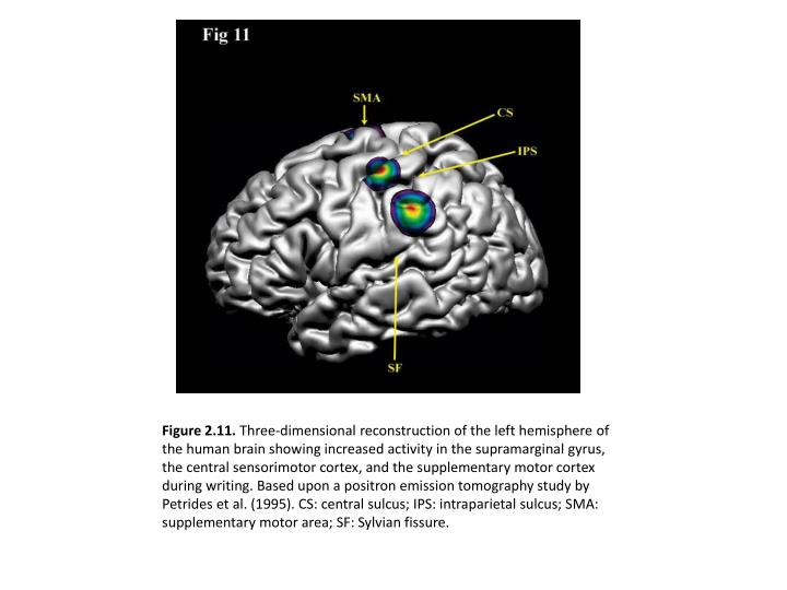 Figure 2.11.