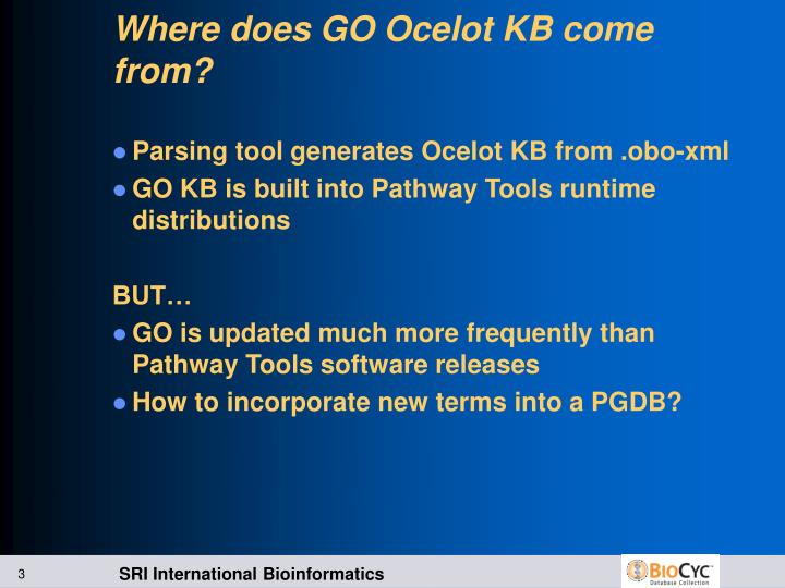Where does go ocelot kb come from