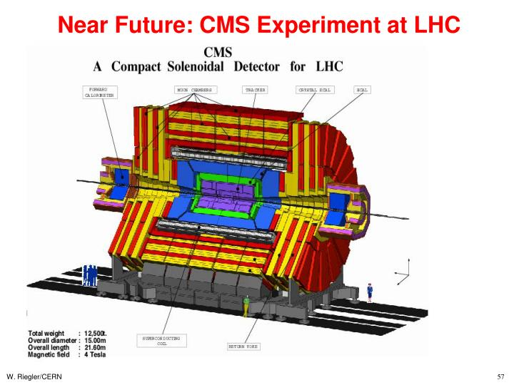 Near Future: CMS Experiment at LHC