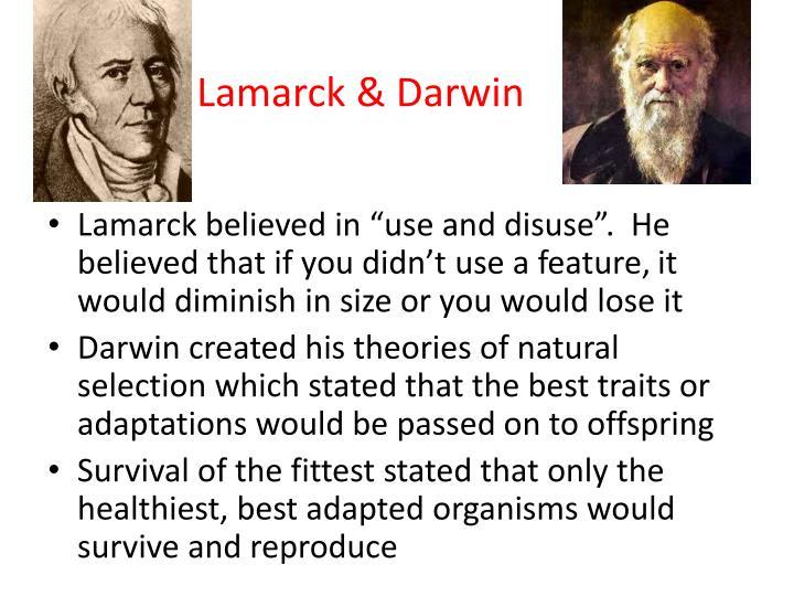Lamarck & Darwin