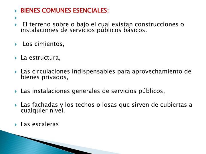 bienes comunes esenciales: