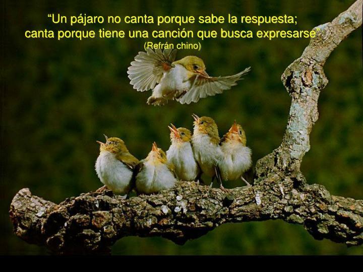 """""""Un pájaro no canta porque sabe la respuesta;"""