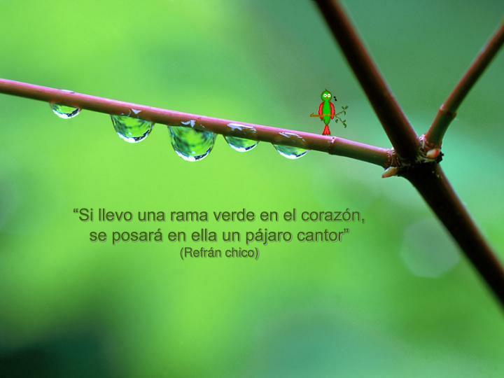 """""""Si llevo una rama verde en el corazón,"""