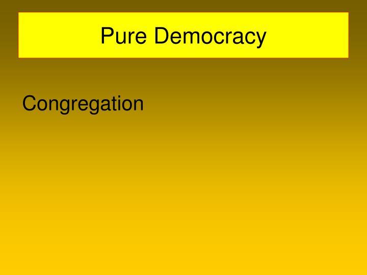 Pure Democracy