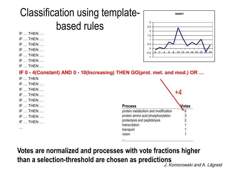 Classification using template-based rules