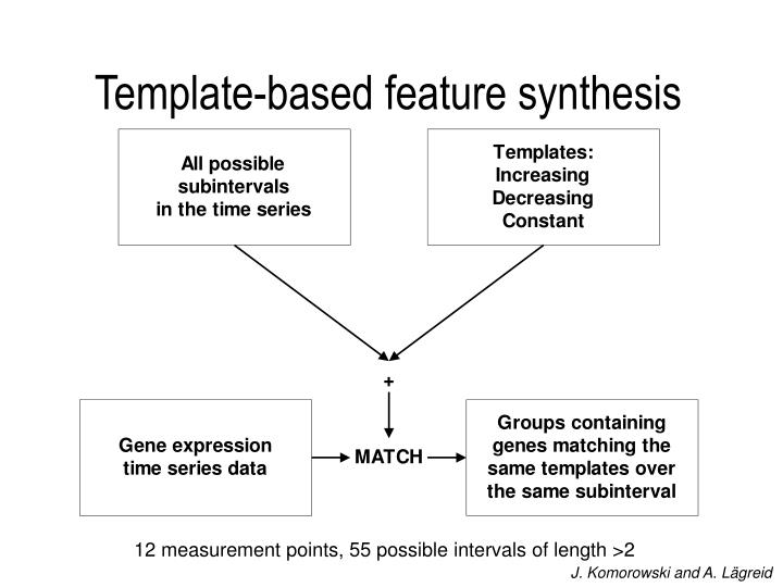 Template-based feature synthesis