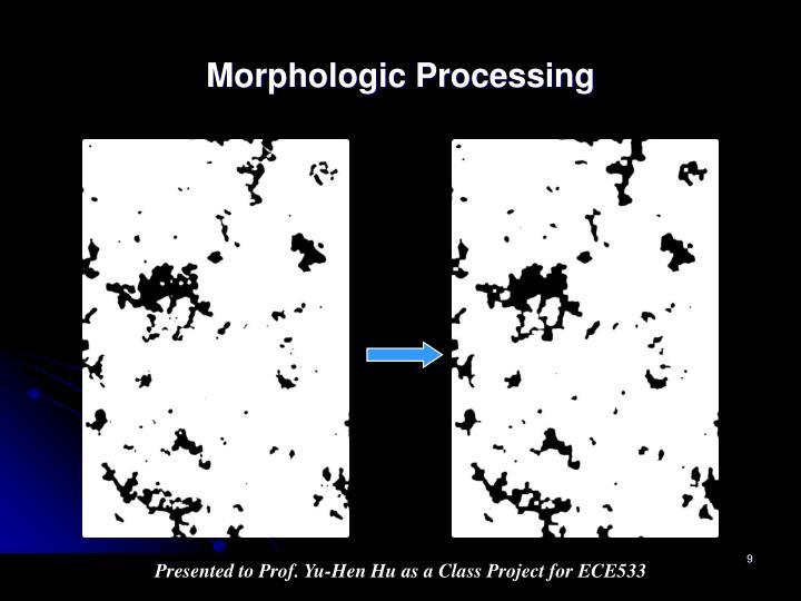 Morphologic Processing