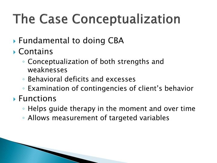 The Case Conceptualization