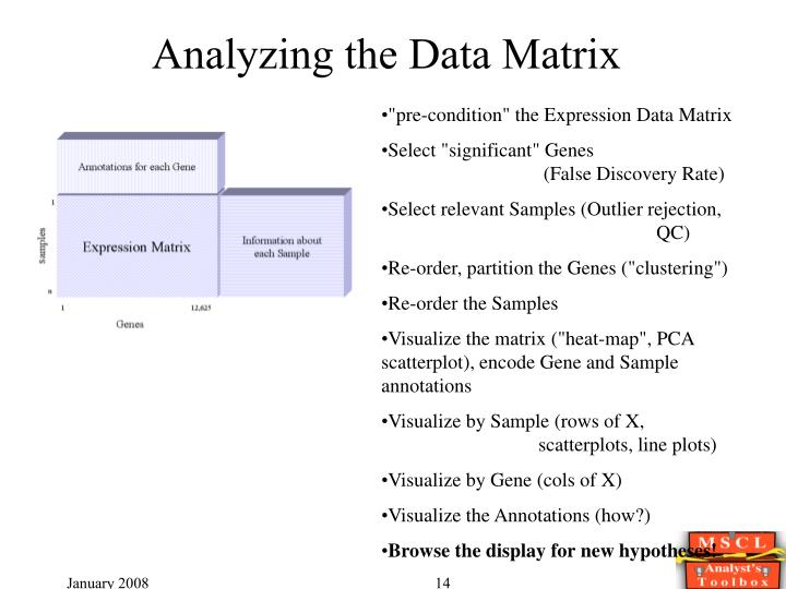 Analyzing the Data Matrix