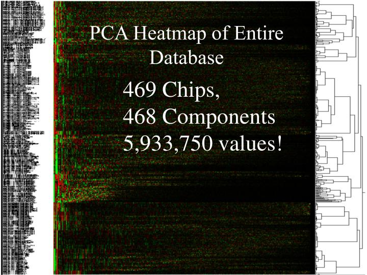 PCA Heatmap of Entire Database