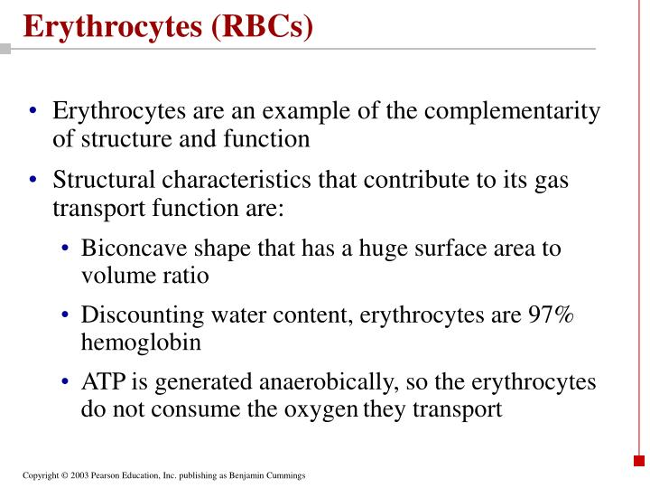 Erythrocytes (RBCs)