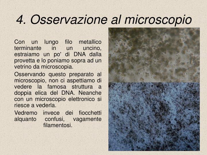 4. Osservazione al microscopio