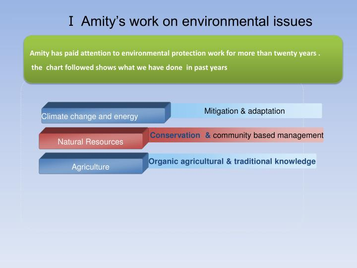 Amity s work on environmental issues