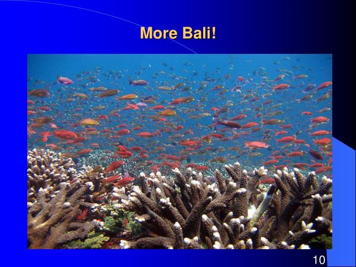 More Bali!