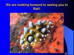 we are looking forward to seeing you in bali