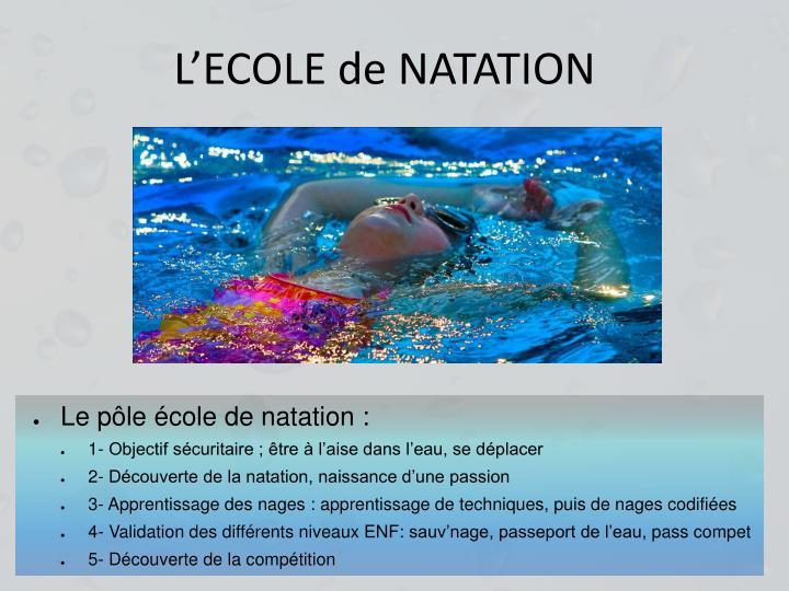 L'ECOLE de NATATION