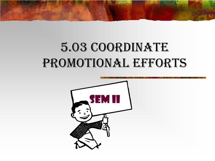 5 03 coordinate promotional efforts