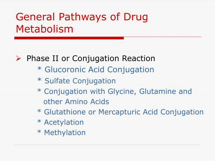 General Pathways of Drug Metabolism