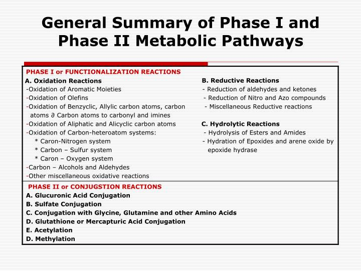 General Summary of Phase I and Phase II Metabolic Pathways