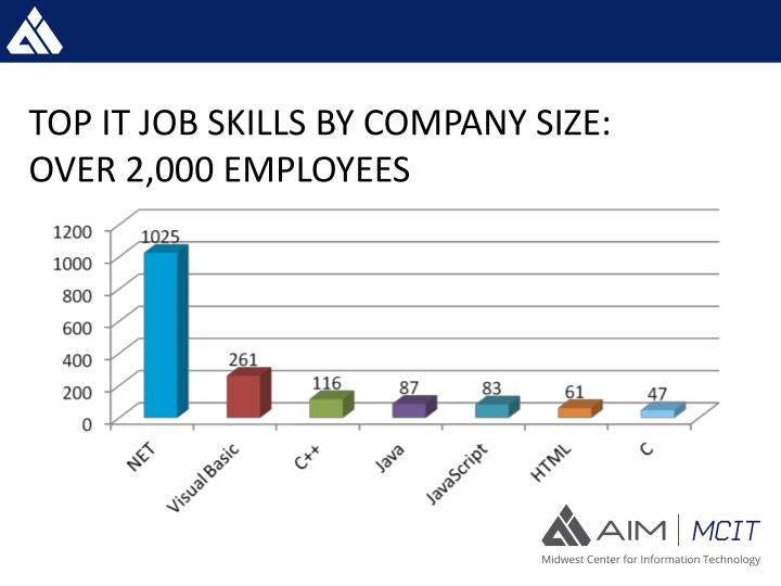 TOP IT JOB SKILLS BY COMPANY SIZE: