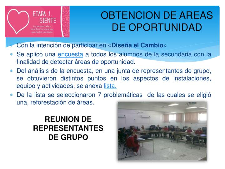 OBTENCION DE AREAS DE OPORTUNIDAD