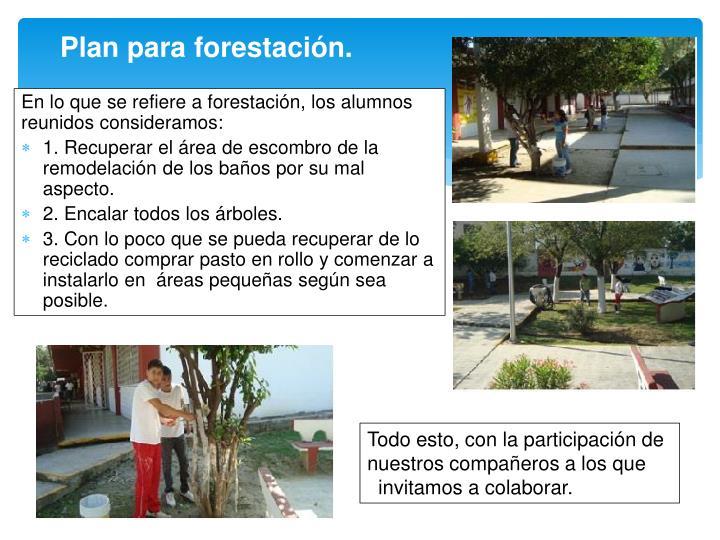 Plan para forestación.