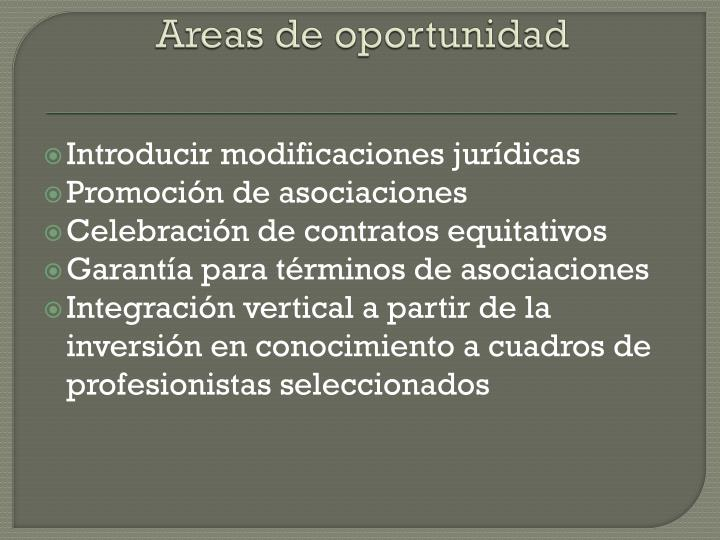 Areas de oportunidad