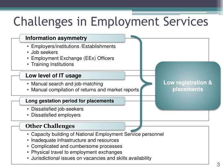 Challenges in Employment Services