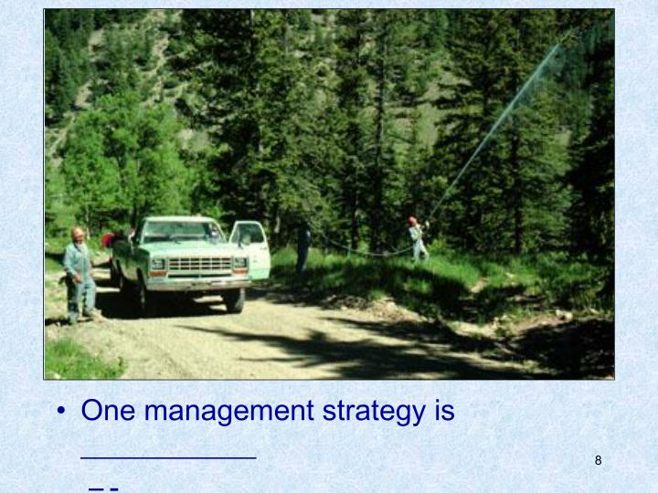 One management strategy is ____________