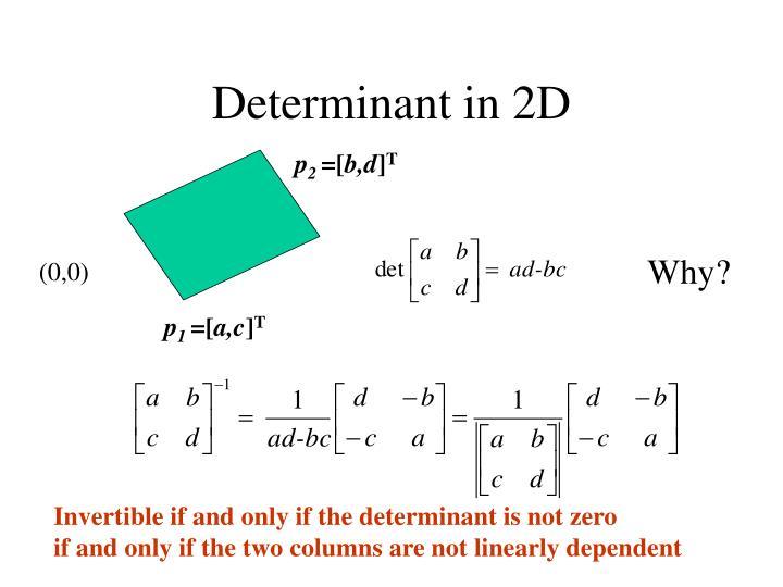 Determinant in 2D