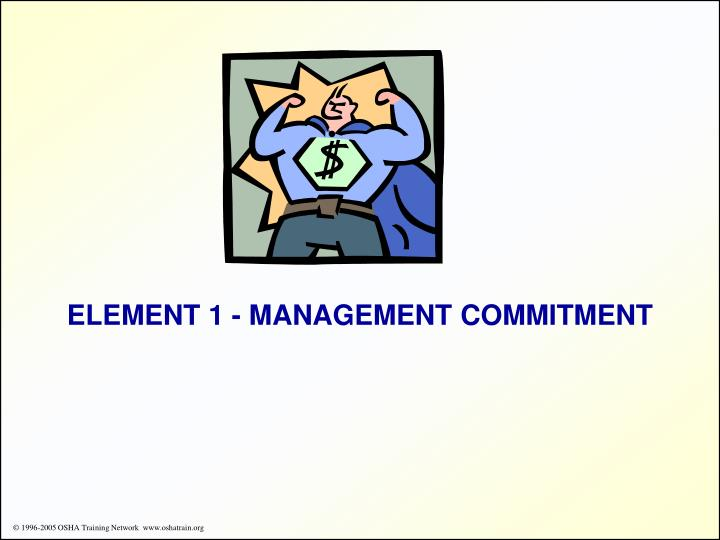 ELEMENT 1 - MANAGEMENT COMMITMENT