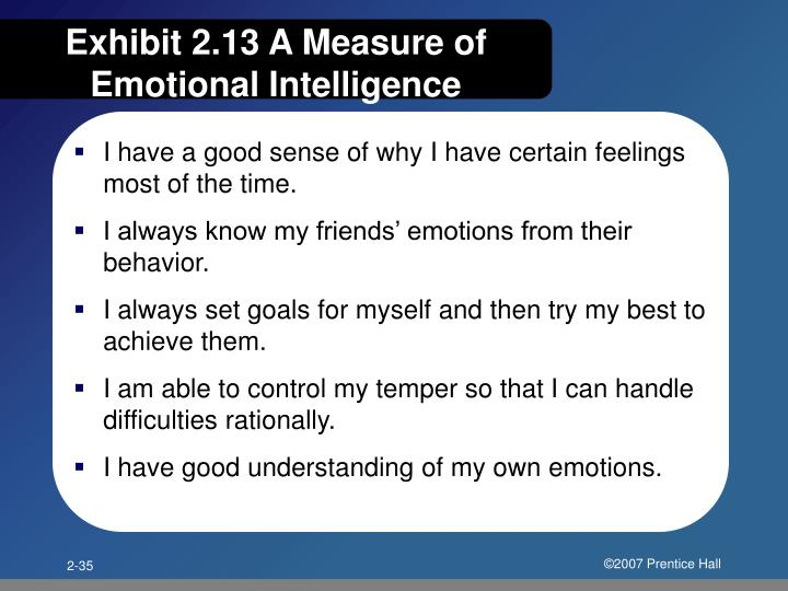 Exhibit 2.13 A Measure of Emotional Intelligence