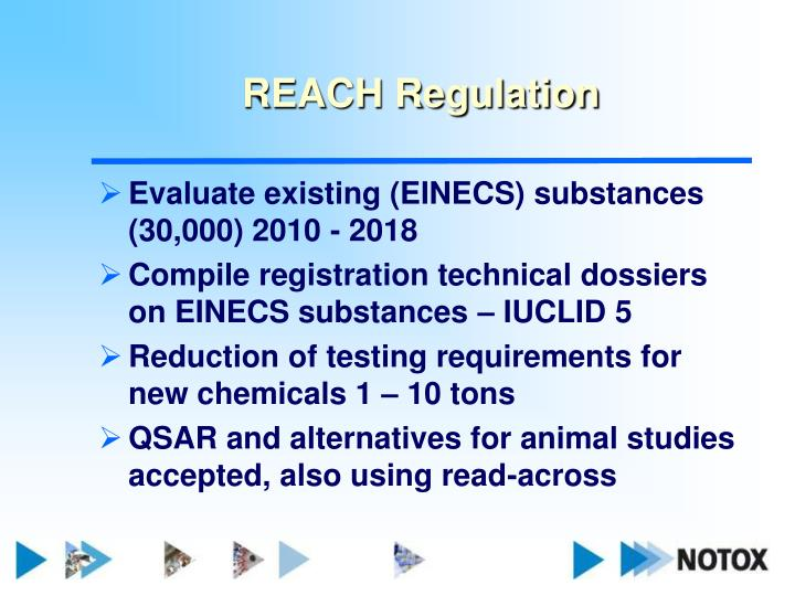 REACH Regulation