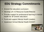 edu strategy commitments