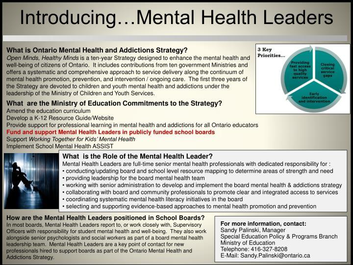 Introducing…Mental Health Leaders
