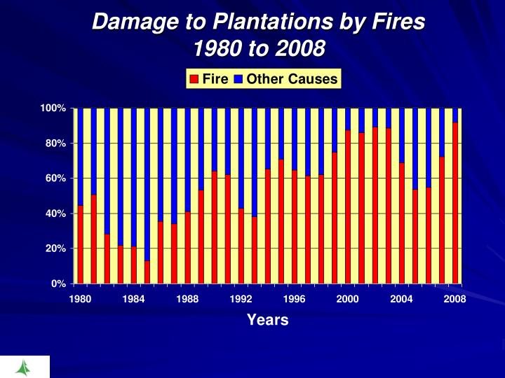 Damage to Plantations by Fires