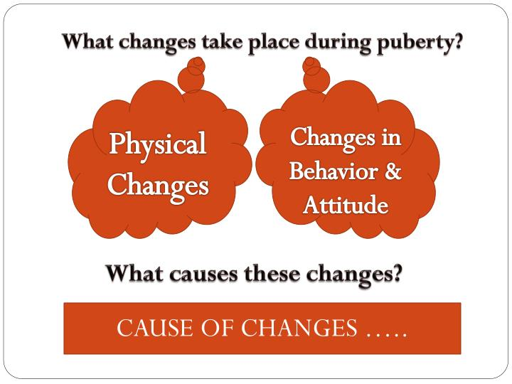 What changes take place during puberty