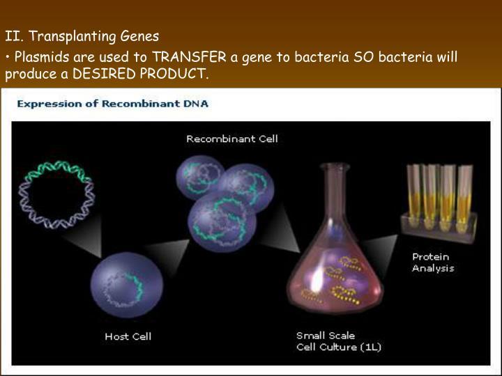 II. Transplanting Genes