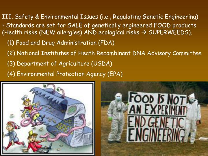 III. Safety & Environmental Issues (i.e., Regulating Genetic Engineering)