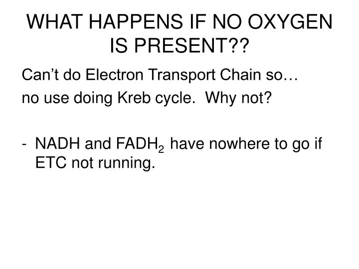 WHAT HAPPENS IF NO OXYGEN IS PRESENT??