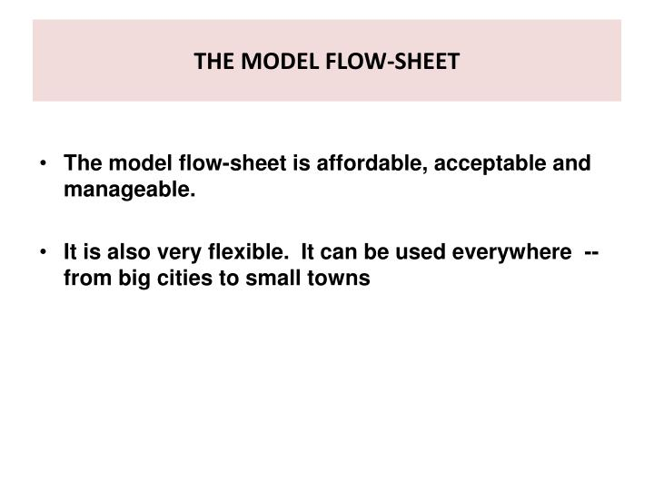 THE MODEL FLOW-SHEET