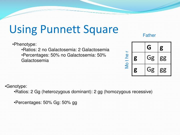 Using Punnett Square