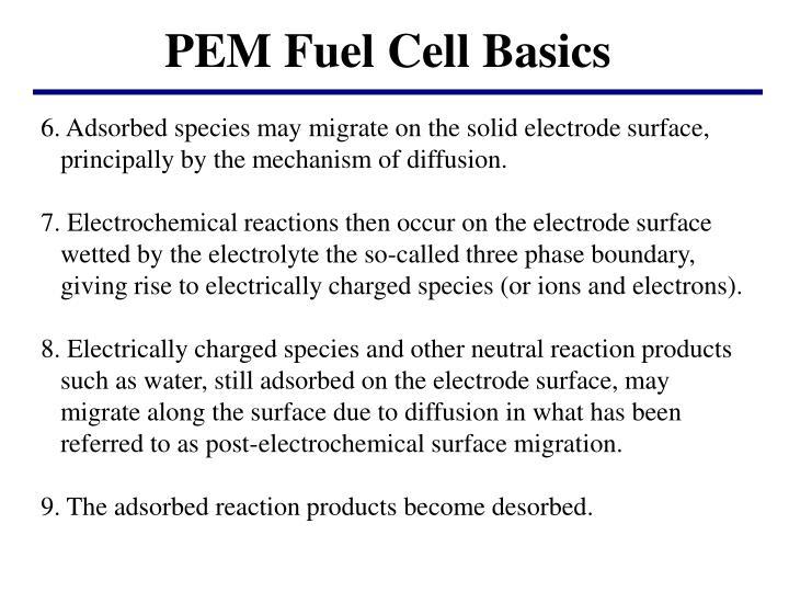 PEM Fuel Cell Basics