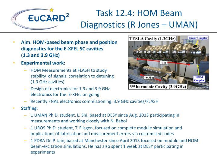 Task 12.4: HOM Beam