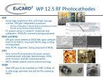 wp 12 5 rf photocathodes