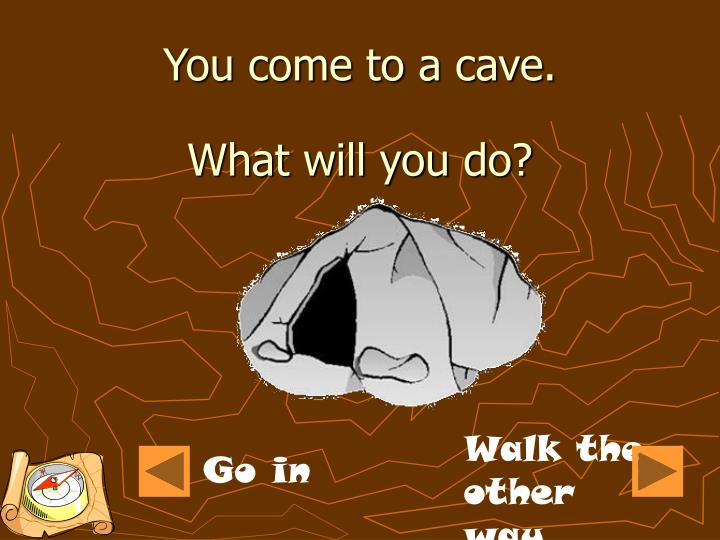 You come to a cave.