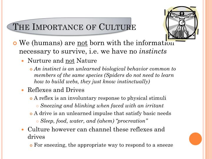 The Importance of Culture